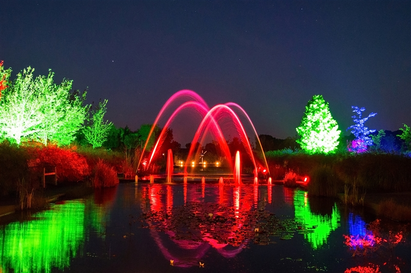 Mystery Gardens in Lights in Appeltern, Gelderland
