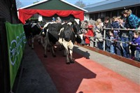 Campina Open Boerderijdagen in Diverse locaties, Nederland