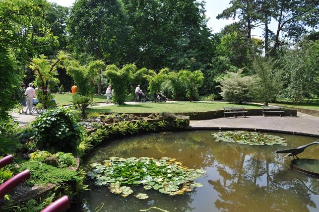 Botanische Tuin Rotterdam : Trompenburg tuinen arboretum rotterdam zuid holland info en