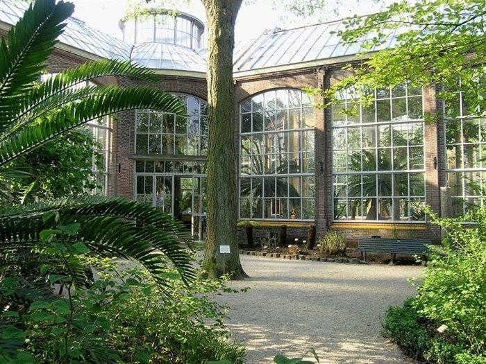 Hortus Botanicus Amsterdam in Amsterdam, Noord-Holland