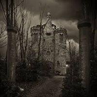 Kerstverkoop in kasteel Olt Stoutenburght in Blesdijke, Friesland