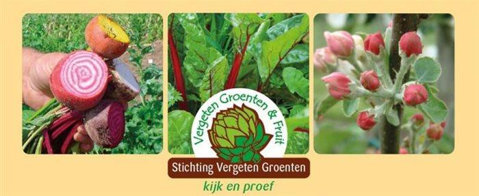 Vergeten Groenten Showtuin in Beesel, Limburg