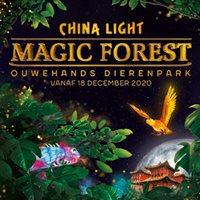 China Light - Magic Forest in Rhenen, Utrecht