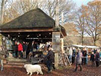 Winterfair Orvelte 2020