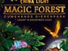 China Light - Magic Forest in Rhenen