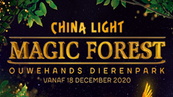 China Light - Magic Forest