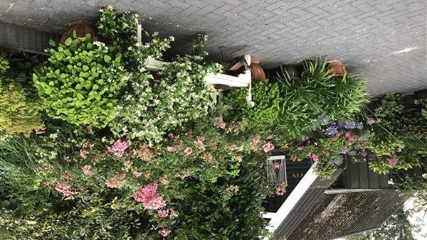 Open Vechtdal- Tuinen