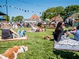 Flinke Festival