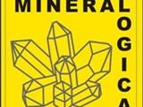 Mineralen en fossielenbeurs Mineralogica