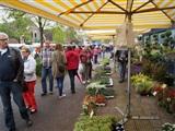 OVVR Paasmarkt Rolde