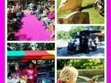 MaRo Evenementen Country Fair