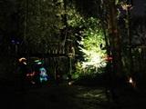 Nachtklimmen bij Fun Forest Venlo-Tegelen