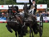 Nationaal Tuigpaardenconcours