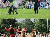 Paardendagen Wâlterswâld