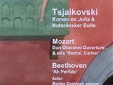 Tsjaikovski's muzikale levensreis