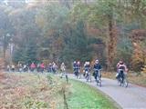 Dauwtrappen in Ypelo- Bornerbroek- Almelo