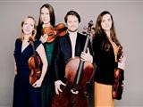 Dudok Quartet - Michele Mazzini