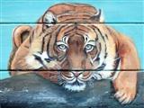 Expositie schilderijen door Tiny de Schipper