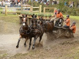 World Championship Four-in-Hand & Outdoor Brabant