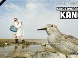 Kanoet - de wonderen van de vogelwereld