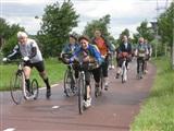 Steprace Rotterdam - Den Hout