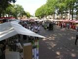 Vlooienmarkt en Braderie Zuidlaren