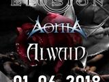 Elusion Alwaid Aonia