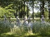 Witte Wieven Wandeling