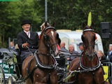 Nationaal Tuigpaardenconcours