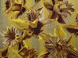 Tarja Laine - The Botanical Paintings