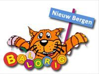Ballorig Nieuw Bergen in Nieuw Bergen, Limburg