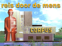 Corpus 'reis door de mens' in Oegstgeest, Zuid-Holland