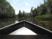 Fluisterbootje huren en kanovaren op de Regge