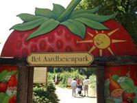 Aardbeienland in Horst, Limburg