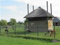 Kinderboerderij Horsterpark