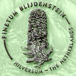 Pinetum Blijdenstein