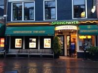 Springhaver in Utrecht, Utrecht