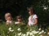 Botanische Tuin Jochumhof in Steyl, Limburg