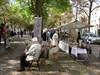 Haagsche Kunst- en Antiekdagen in Den Haag, Zuid-Holland