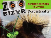Zoo Bizar in Orvelte, Drenthe